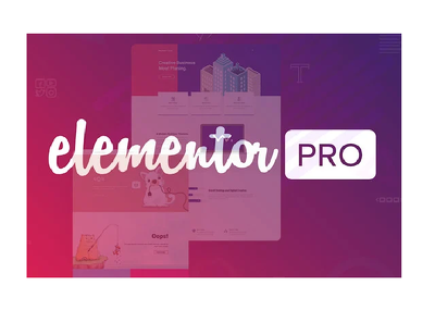 I Will Install Elementor Pro And Astra Pro +Create Landing Page.