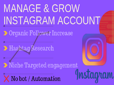 Organically grow your Instagram Account for 30 days