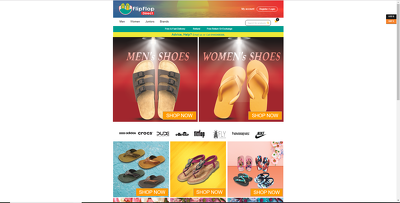 Create Responsive Professional Business or E-commerce Website