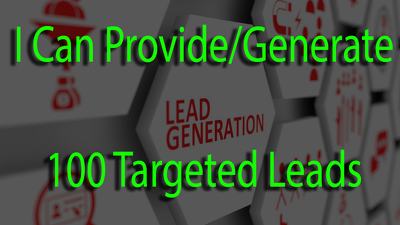 Provide 100 Targeted Lead  or 2 Hours Data Entry