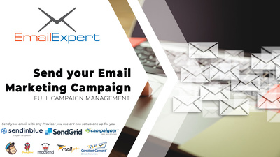 Send An Email Marketing Campaign For You