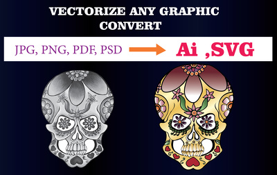 Professionally vectorize any graphic in 12 hours