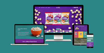 Build a Fully Responsive & Professional Looking Shopify website
