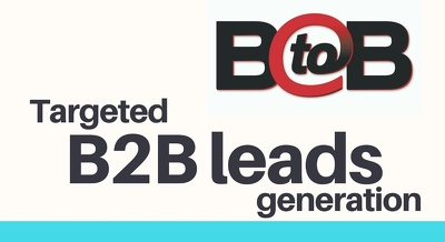 Provide 100 Your Targeted B2B Leads (100% Valid)
