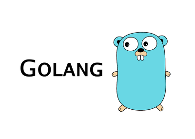 I Will Code Or Fix The Program In Golang,Go Programming Language