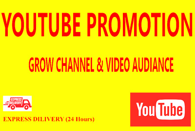 Rapidly Massive Youtube Promotion For Your Channel Videos