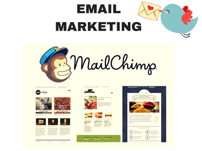 Design Mailchimp template for your business in 1 day