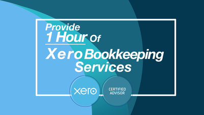 Provide 1 hour of Xero Bookkeeping Services
