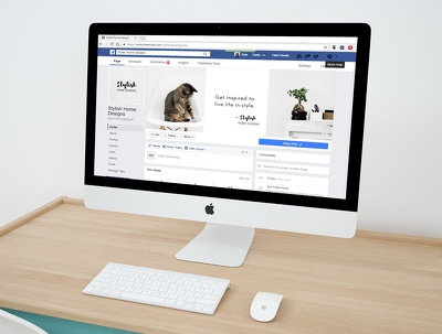 Create facebook business/professional Page