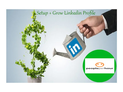 Grow Your LinkedIn Profile Connections upto 100