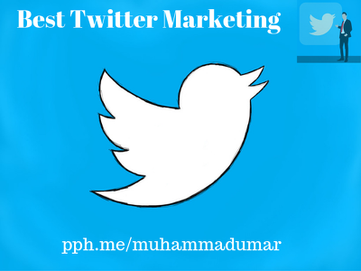 Do best professional twitter marketing and promotion