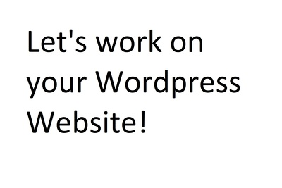 Manage and work on your Wordpress site professionally!