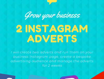 Create 2 Instagram adverts implement them and manage for 2 weeks