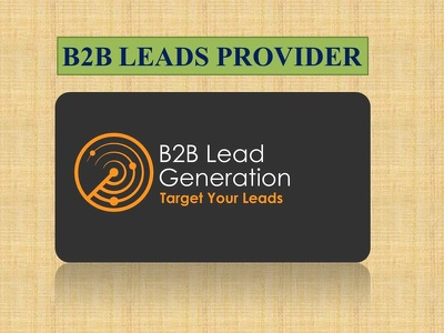 Provide targeted b2b lead generation services