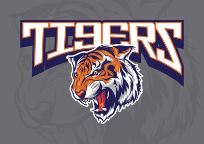 Design professional mascot logo