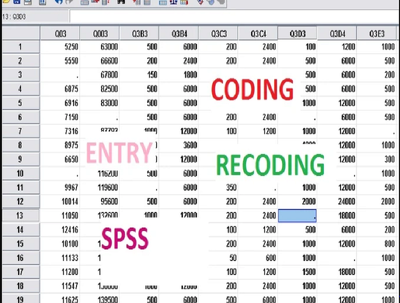 Do your SPSS research data entry