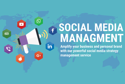 Manage Your Social Media Profiles for 5 Days