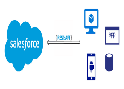Develop/Integrate REST APIs with Salesforce