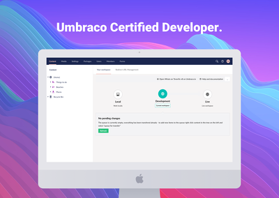 Hire an Umbraco Certified Developer for 1 day (8 hours)