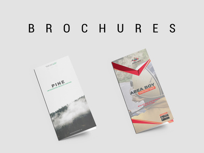 Design An Elegant Brochure or Flyer With Unlimited Revisions