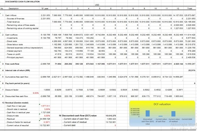 DCF valuation (professional financial projections)