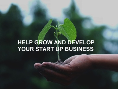 Provide 1 hour growth advice for your start up business