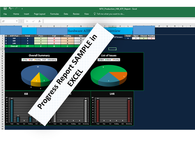 Create Professional Excel Spreadsheets And Dashboards