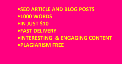 Write SEO articles and blog posts in only 24 hours