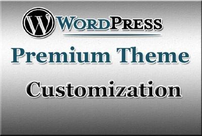 Customize Any Premium WordPress Theme Professionally