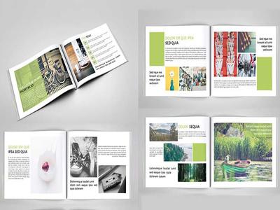 Design Professional Product Catalog
