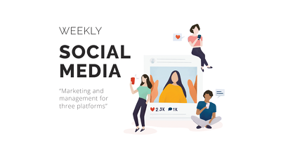 Social Media Marketing & Management (3 platforms) - Weekly