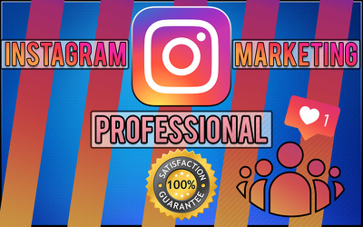 Manage your instgram page and expouse it to thousands for 30 day