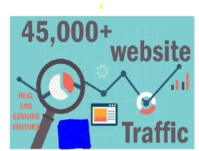 Provide to you 45,000+ keyword targeted traffic from google