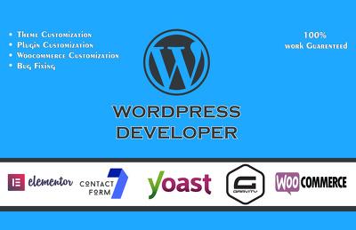 Create, Fix, Customize Your Wordpress Website ( Hourly )