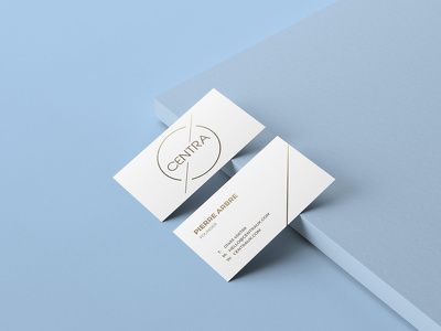 Professional Business Card Design using your Company's logo