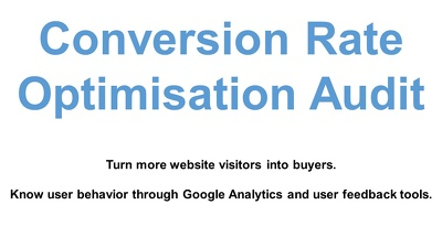 Provide 1 Conversion Rate Optimisation Audit report file