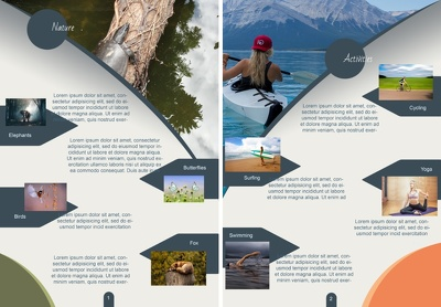 Design a professional brochure or Flyer (2 pages both sides)
