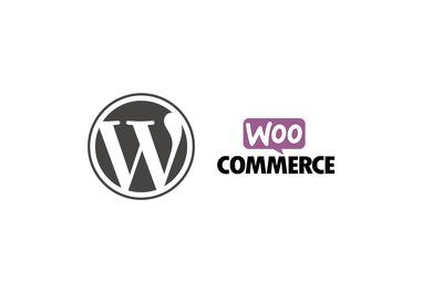 WordPress Ninja for 30 minutes