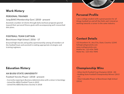 Design Professional CV Or Resume For You