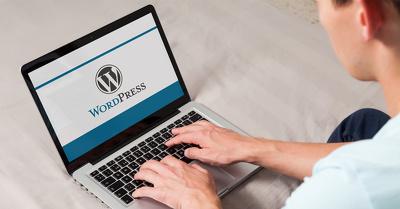 Create unique wordpress webiste according to your requirements.