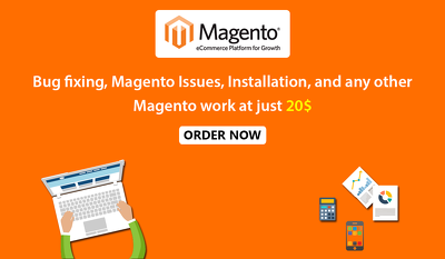Fix Magento Bugs, Install Magento and do the design changes