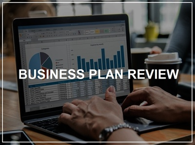 Review your existing business plan & provide feedback / advice