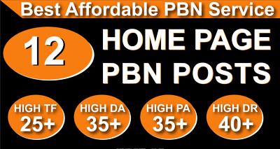 Homepage 12 PBN High 30 Plus DA PA CF TF Moz Authority