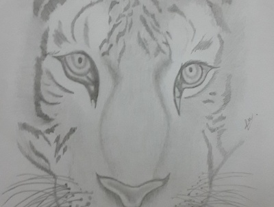 Create awesome pencil drawings, calligraphy and much more