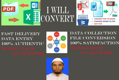 Do PDF to Word 15 pages Data Entry within 24 hours