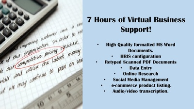 Provide 7 hours of VA Business Support Services for