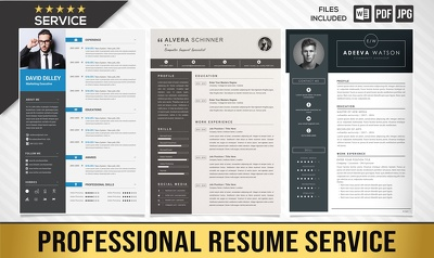 Write, Edit and Design a Professional Resume