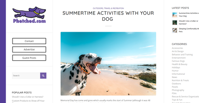 Publish A Guest Post On An 11 Year Old Pet Blog