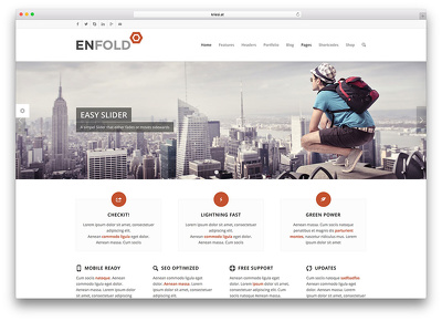 Design, Fix Or Customize Your Website With Enfold Theme