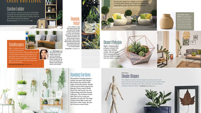 Design Brochure / Magazine / Catalogue with Multiple Revisions